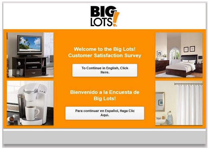 Big Lots Survey Step By Step Guide 1