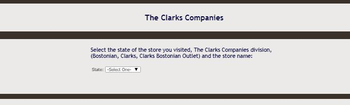 Clarks Customer Satisfaction Survey guide 2
