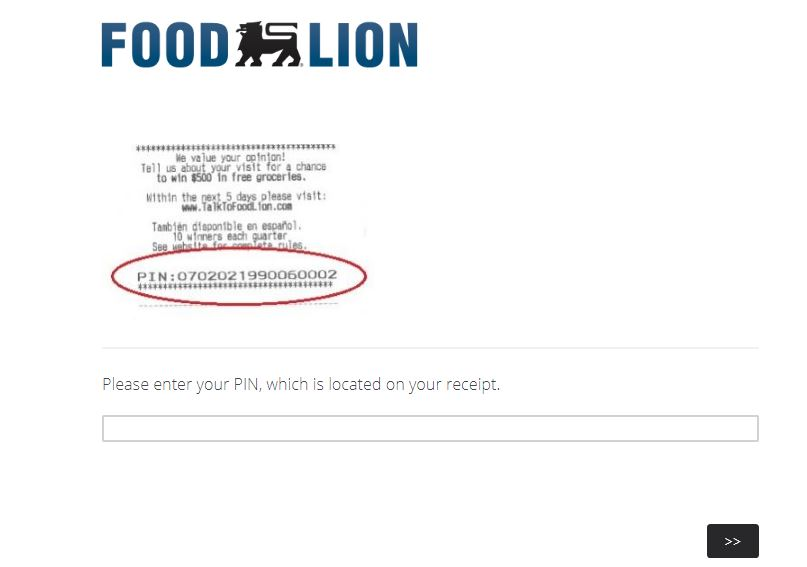 Talk To Food Lion Survey step by step guide
