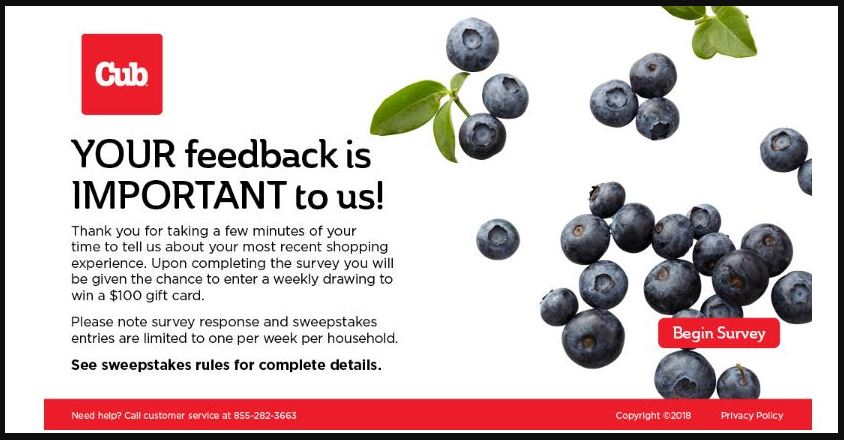 cub foods survey sweepstakes